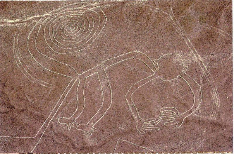 Малюнки в пустелі Наска