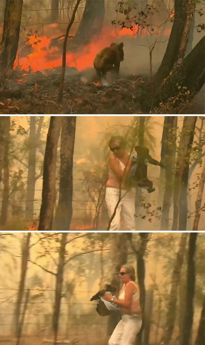 Пожежі в Австраліїї